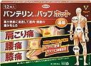 【第2類医薬品】バンテリンコーワパップホット 12枚 ※セルフメディケーション税制対象商品