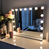 FENCHILIN 化粧鏡 女優ミラー ハリウッドミラー 壁掛け/卓上両用 USBポート付き 三色照明モード 無段階調光 15個LED電球付き 10倍拡大鏡付き 58x46cm