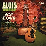 Way Down in the Jungle Room [12 inch Analog]