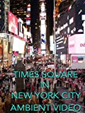 Times Square in New York City ambient video