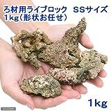 (海水魚 ろ材)バクテリア付き ろ材用ライブロック SSサイズ(1kg)(形状お任せ) 本州・四国限定[生体]