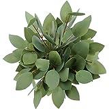 Greentime Artificial Eucalyptus Garland Faux Silk Eucalyptus Leaves Vines Artificial Garland for Home Decoration Wedding Back