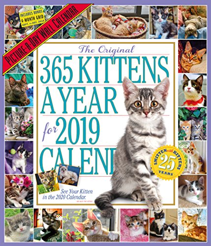 The Original 365 Kittens a Yea...