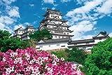 2542ピース ジグソーパズル パズルの超達人EX 検定 ゴールド (日本風景) 秀麗 白鷺城-兵庫 スーパースモールピース(50x75cm)