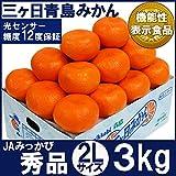 三ヶ日青島みかん【秀品】2Lサイズ3キロ(極上三ケ日青島みかん)