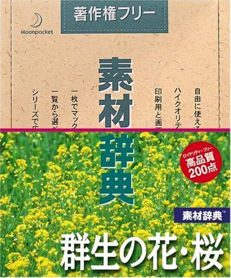 素材辞典 Vol.20 群生の花?桜編