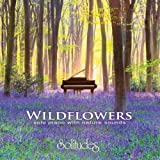 Wildflowers ~ solo piano with nature sounds by Solitudes Collection