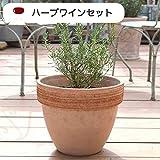 ハーブ栽培セット ( ローズマリー & セージ )【 ハーブワイン 用】