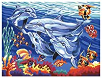 """Mammut - Painting by Number """"Dolphins"""""""