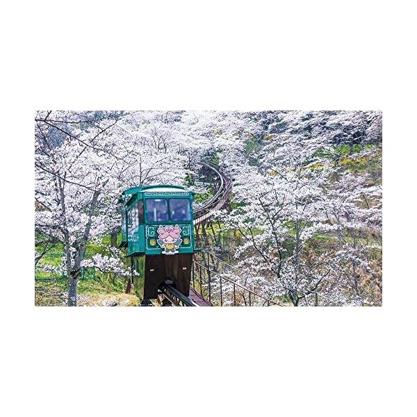 快速 仙台シティラビット 4K撮影作品 桜の東...の紹介画像6