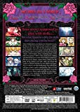 Rozen Maiden/ [DVD] [Import]