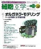 細胞工学2011年11月号 Vol.30 No.11