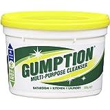 Gumption Multi -Purpose Cleanser,  500 grams