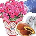 母の日ギフト カーネーション 文明堂どら焼きセット 花とスイーツ フラワーギフト 5号鉢 (ピンク)