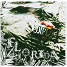 FLORIDA [�A���CD] (BDCD069)