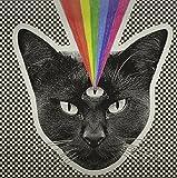 Black Cat [12 inch Analog]