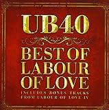 Labour Of Love-standar