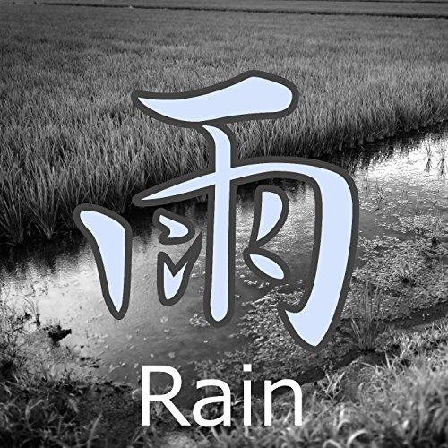 雨 (環境音)