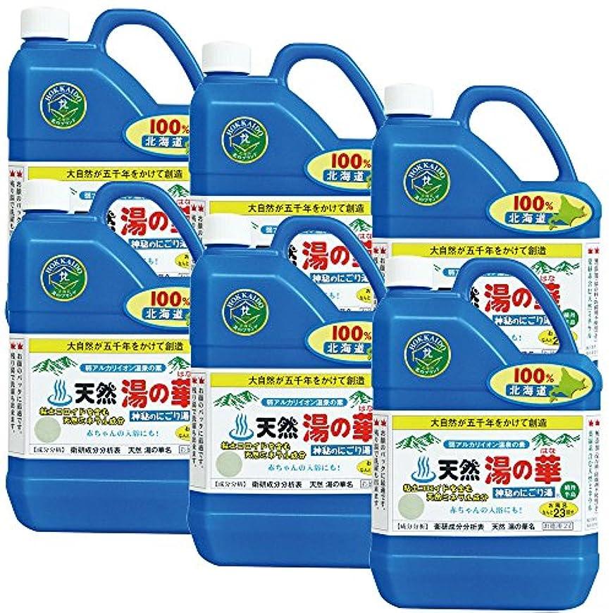 無人積分臭い天然湯の華 23回分 6本セット