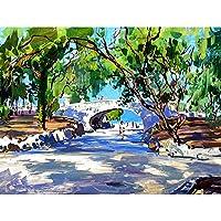 ナンバーペイント絵によるzddyxペイント公園手作りペイント高品質キャンバスデジタルサプライズギフトによる素晴らしい絵画素晴らしい成果壁アート40 x 50 cm(16 x 20インチ)フレーム付き
