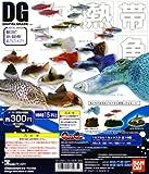 ガシャポン デジタルグレード(DG)シリーズ 熱帯魚 全15種セット