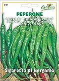 野菜の種 ペッパーチリ・ベルガモ