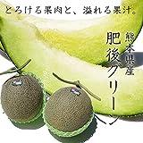 【 熊本県産 】 肥後グリーン メロン 秀品 2玉入り 濃厚な甘さと上品な舌触り。