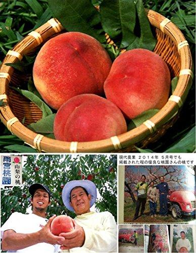 桃【特秀】山梨の桃 加納岩の桃 雨宮桃園産 (5kg)