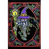 ウィザードMystical Whiz CrowスタッフGlowing Orbパープル帽子ファンタジーサイケデリックBlacklightポスター23 x 35