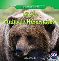 Why Do Animals Hibernate? (Nature's Super Secrets)