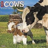 Just Cows 2019 Calendar