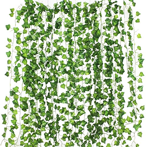 【おしゃれ】グリーンカーテンのおすすめ人気商品ランキング10選