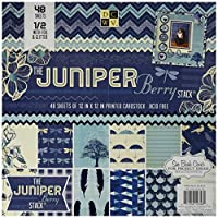 Die Cuts With A View 48-Sheet Premium Stack, 12-inches by 12-inches, Juniper Berry by Die Cuts With a View