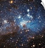 "Stocktrekイメージ壁Peel壁アート印刷entitled渦巻きのガスとダストReside in the large Magellanicクラウド 15"" x 16"" stk201419s_14"