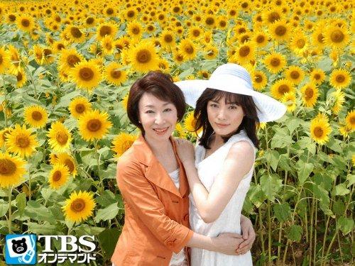 ひまわり〜夏目雅子、27年の生涯と母の愛〜 -