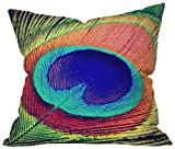 Deny Designs Shannon Clark The Eye Throw Pillow 26 x 26 [並行輸入品]