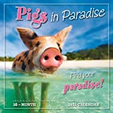 2021 Pigs in Paradise 16-Month Wall Calendar