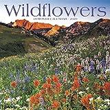 Wildflowers 2020 Calendar