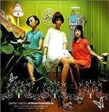 ミホミホマコト(DVD付)