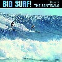 Big Surf by SENTINALS (2015-07-01)