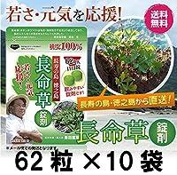 長命草 錠剤 最もお得な10袋セット 勇田薬草園