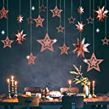 Glitter Rose Gold Star Garland Twinkle Little Star Party Decoration 3D Star Cutout Hanging Bunting Banner for Birthday/Baby S