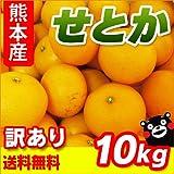 熊本県産 訳あり せとか 10kg 【 九州 熊本 セトカ みかん ミカン オレンジ 柑橘 】