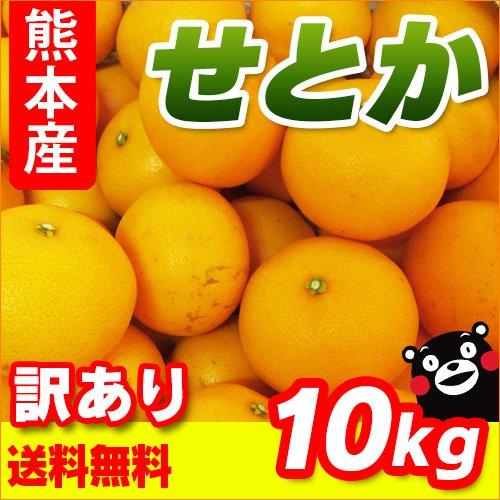 熊本産 訳あり せとか 10kg 【 九州 熊本 セトカ みかん ミカン オレンジ 柑橘 】