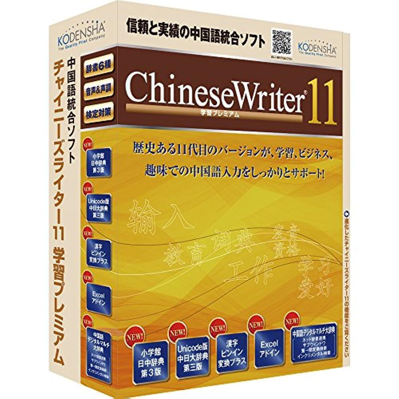 リビジョン論理ラメ高電社 ChineseWriter11 学習プレミアム