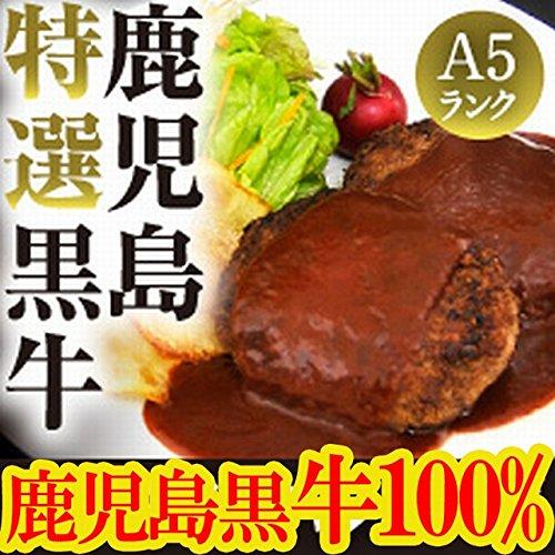 A5ランク鹿児島黒牛100%高島プレミアムハンバーグ 130g×5個セット/冷凍A