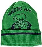 (キャロウェイアパレル)Callaway Apparel レディース 北極ジャカード ニットキャップ 【 241-6284811 】 241-6284811 140 グリーン FR