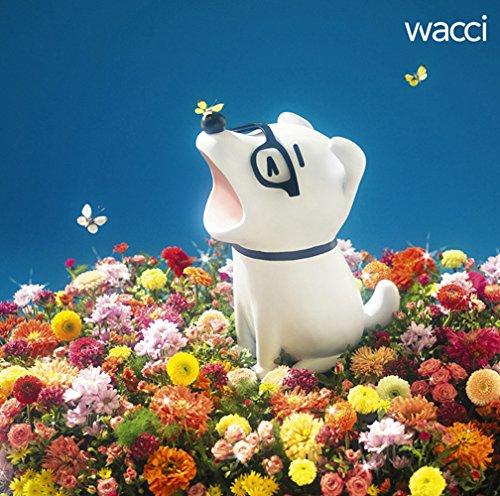wacci【Baton】歌詞の意味を徹底解説!力のこもった手の意味って?家族の大きな愛を感じてみようの画像