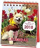 アートプリントジャパン 2018年 俊介カレンダー(週めくりミニ) No.024 1000093357
