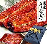 ギフト うなぎ(鰻)の特大長蒲焼き3本セット 風呂敷包み 3~4人前用